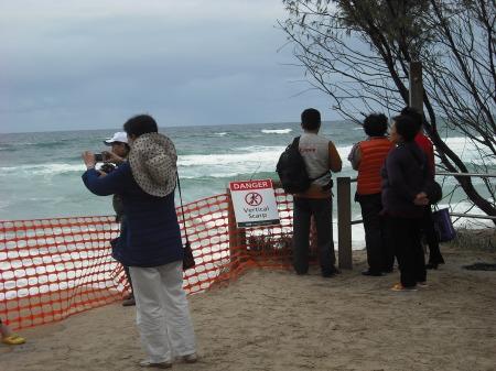 08 tourists