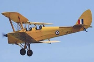 This is a tiger moth - do not try to kill it.  It is innocent and on the whole too large for random hand-clapping.