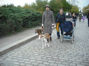 Tall thin person with tall thin dogs.